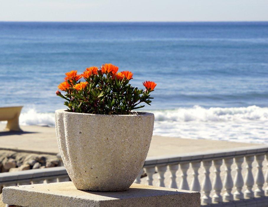 """Цветочный горшок """"Море"""""""